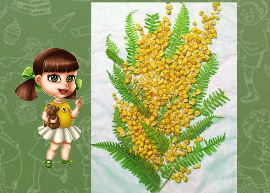 из кукурузы