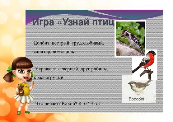 узнай птиц