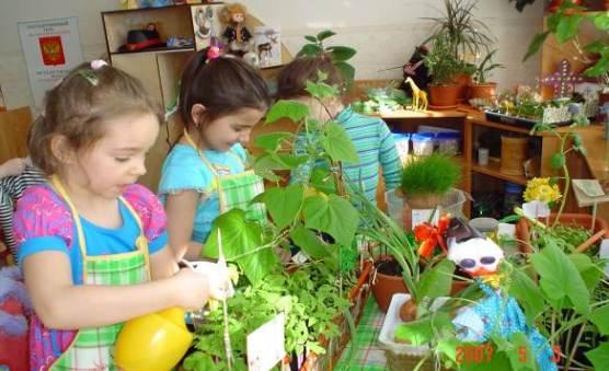 Игра как средство экологического воспитания дошколят