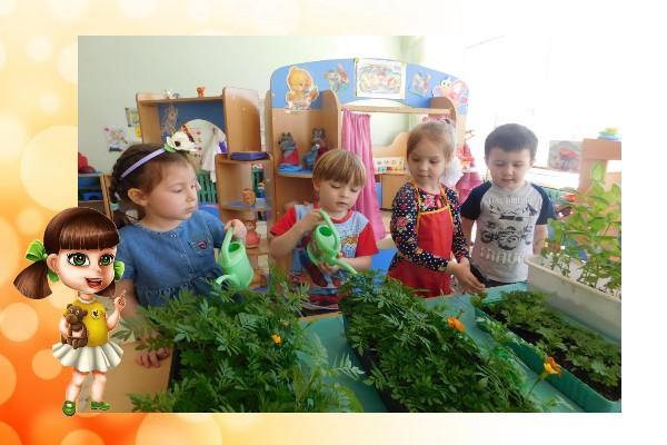 проект по садоводству