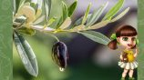 Костюм маслины на Рождество своими руками